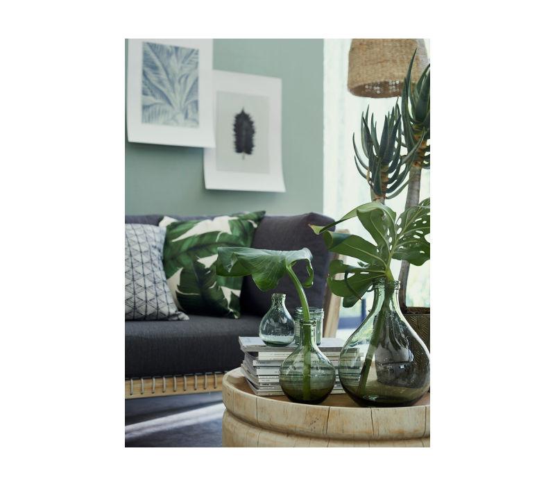 plantas naturales. Elementos naturales en decoración